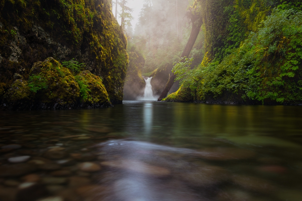 A fine art nature photograph taken of Punchbowl Falls in Oregon on a foggy morning by Bryce Mironuck