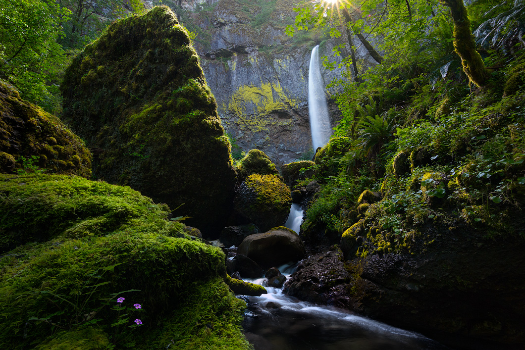A fine art nature photograph of Elowah's Falls in a waterfall rainforest scene by Bryce Mironuck