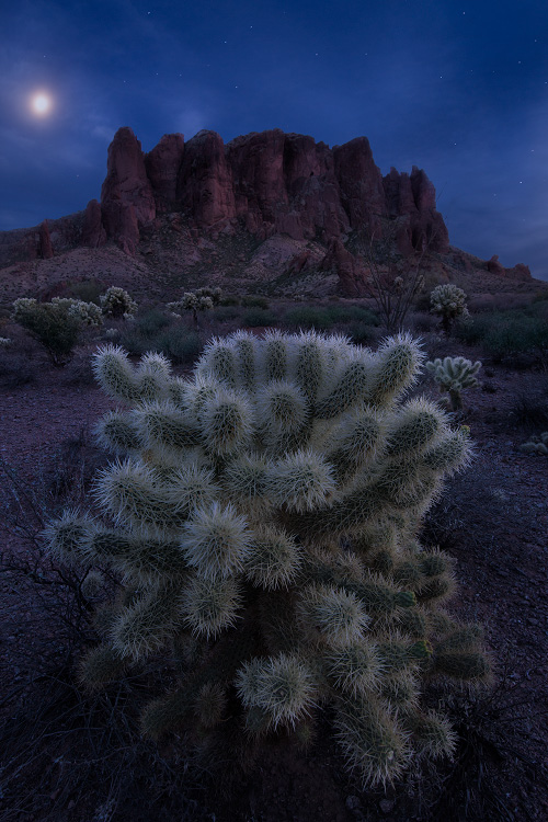 A fine art nature photograph taken at sunset in the superstition mountains in the Arizona desert by Bryce Mironuck