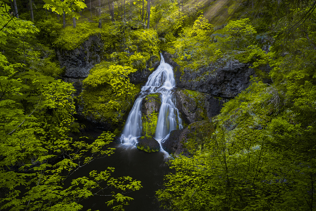 A fine art nature photograph taken of a waterfall in a rainforest on Vancouver Island by Bryce Mironuck
