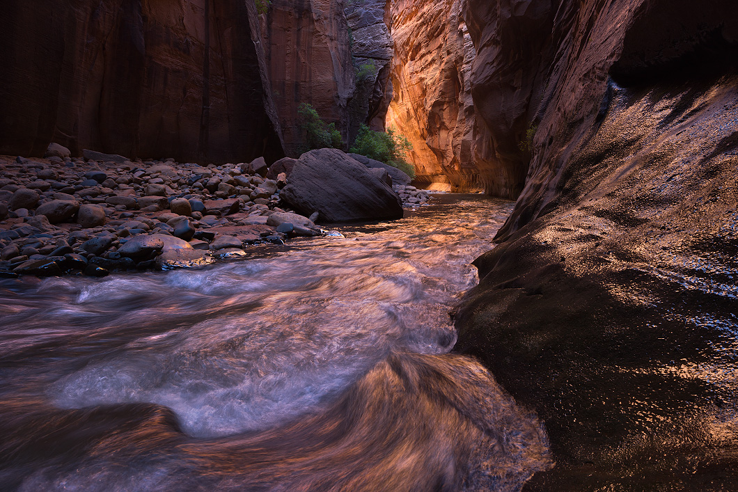 A fine art nature photograph taken in the narrows of Zion National Park, Utah by Bryce Mironuck