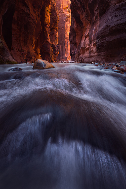 A fine art nature photograph taken in The Narrows in Zion National Park, Utah by Bryce Mironuck