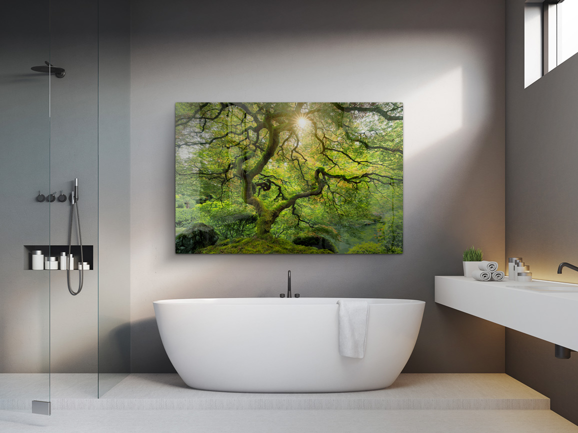 bryce-mironuck-nature-photography-bathroom-print-1
