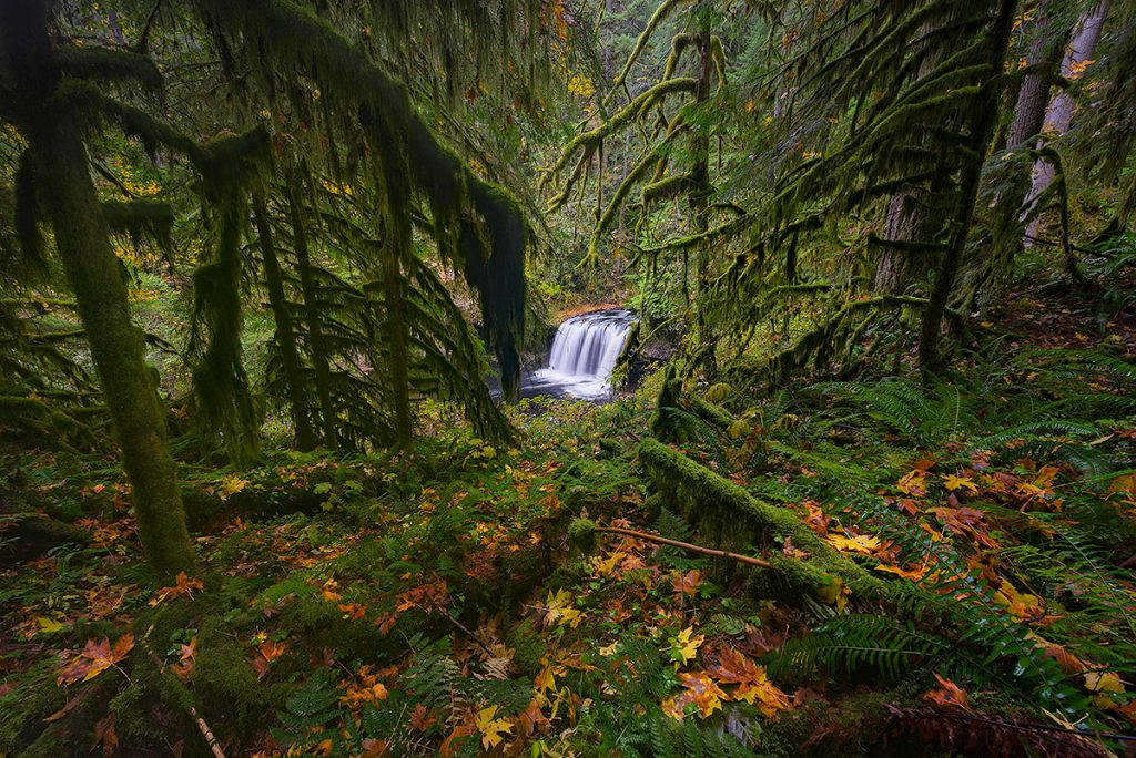 A fine art photograph of Upper Butte Creek Falls in Oregon by Bryce Mironuck