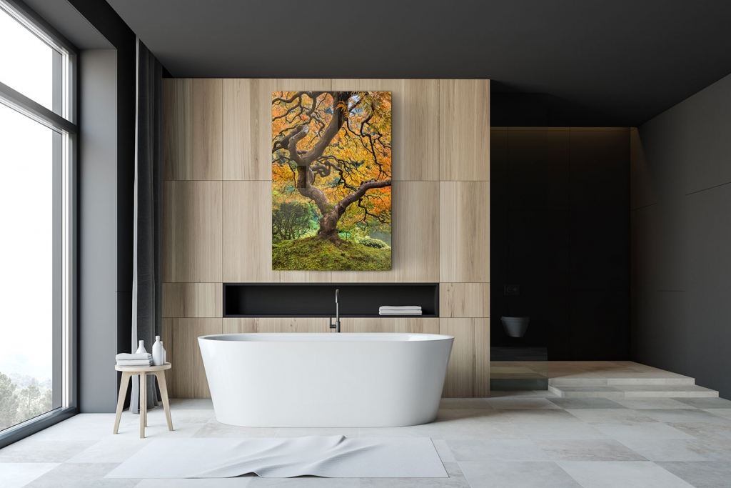 A photography print in a bathroom, similar to Peter Lik, by Bryce Mironuck